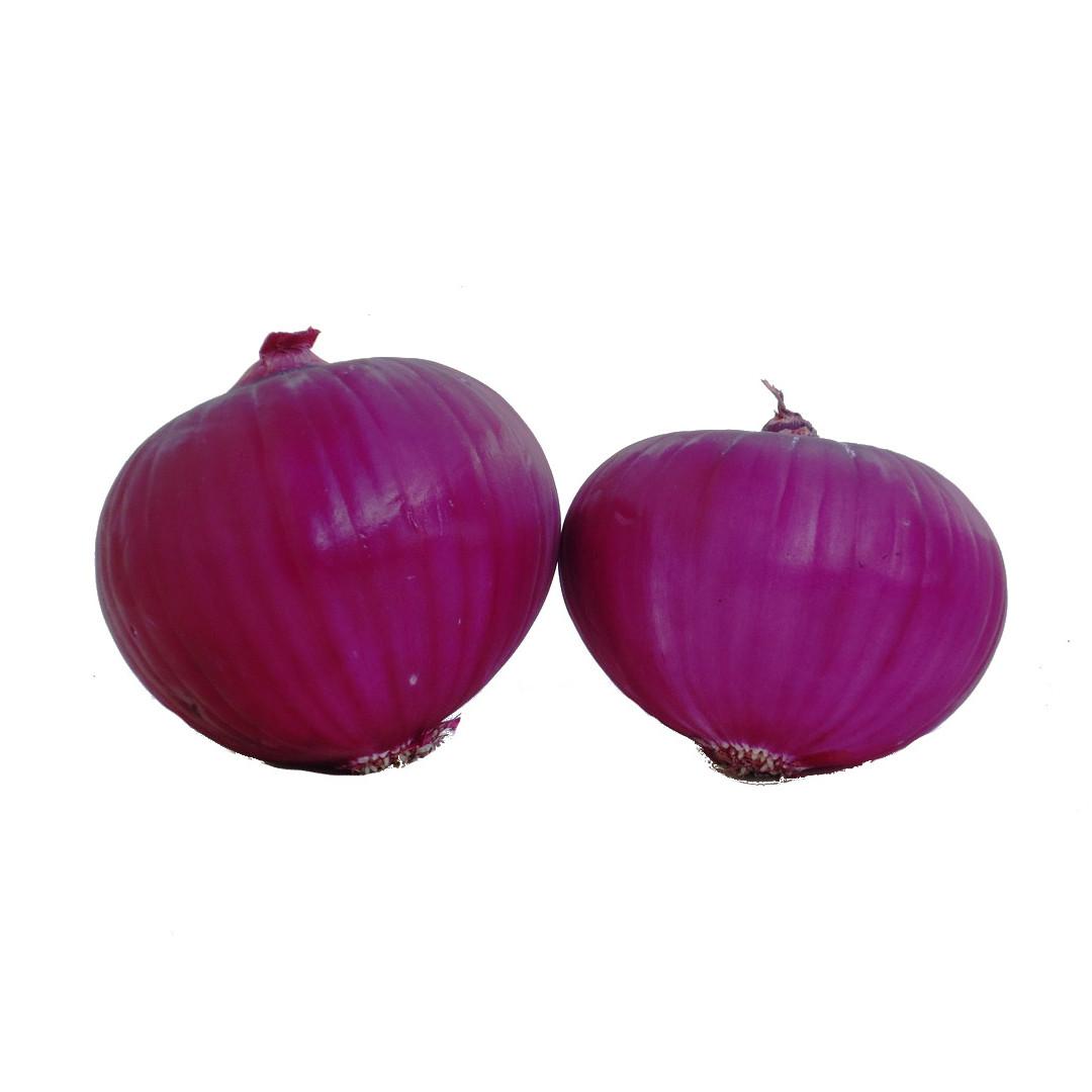 cipolla-non-igp